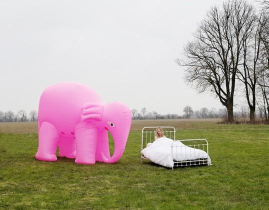 10_elephant-lit01_index