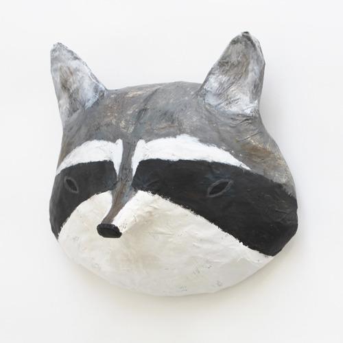 raccoon2_sml