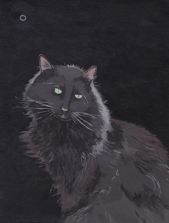 11.-Black-Cat